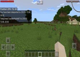 Cómo tele-transportarse a otra localización en Minecraft