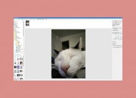 Cómo hacer GIFs animados con PhotoScape