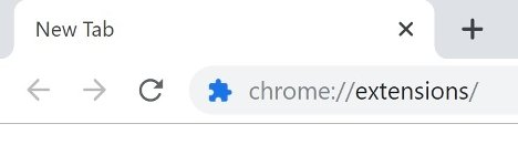 Access to the extensions section through Chrome's address bar