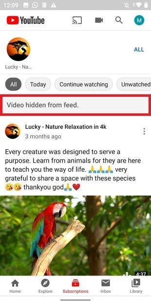 Confirmación de vídeo ocultado