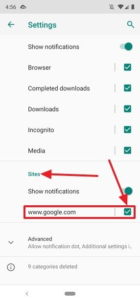 Disable notifications for individual websites