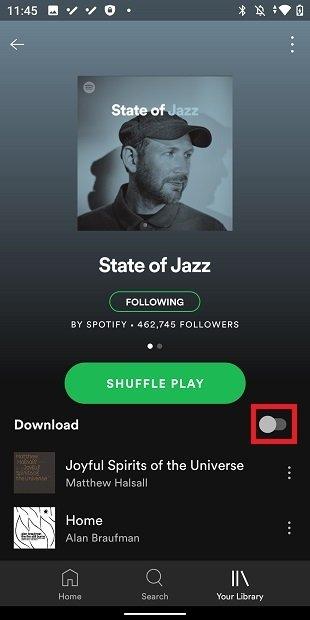 Descargar música offline
