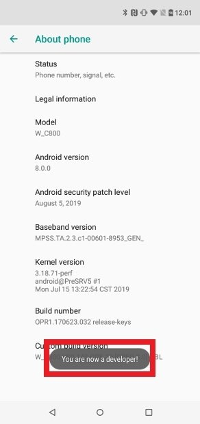 Enabling the developer mode on Android