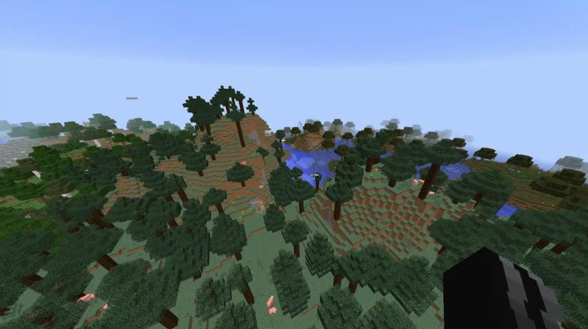 Bioma de montaña
