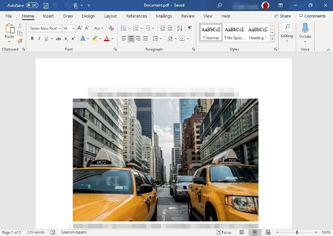 PDF document converted to Word