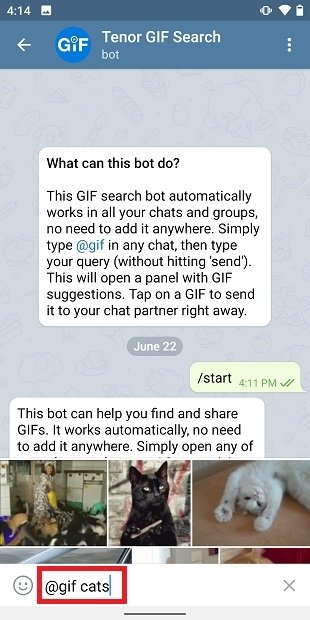 Searching for a GIF with the bot