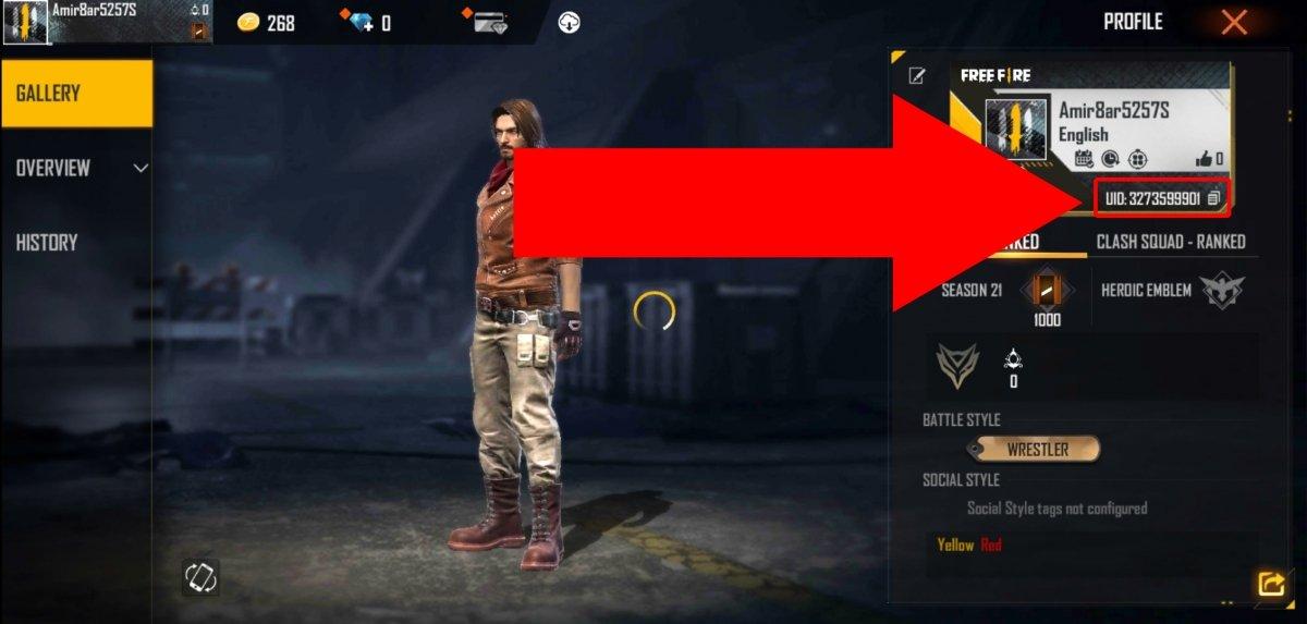 Debajo de la ficha aparece tu ID de jugador