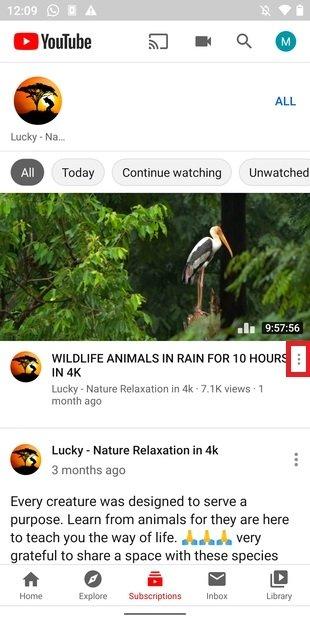 Menú del vídeo