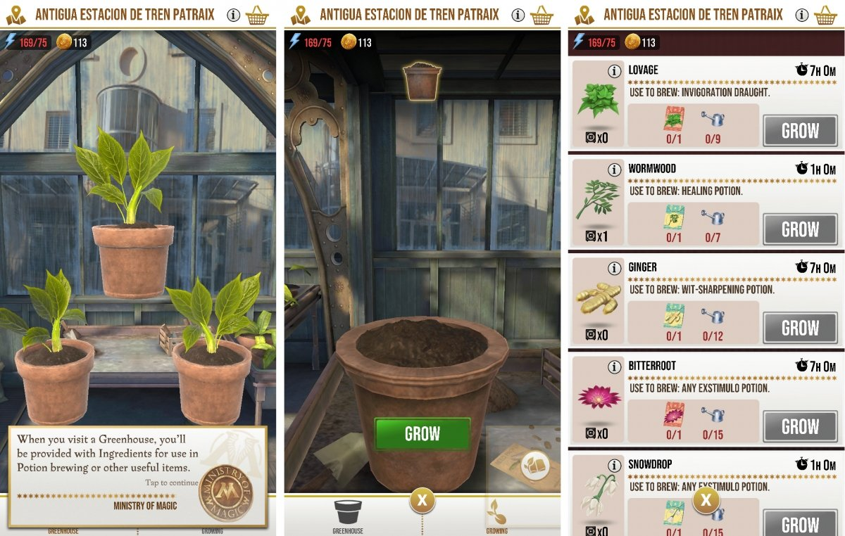 You can grow your own plants in the greenhouses
