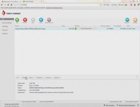 Descargar torrents con el navegador